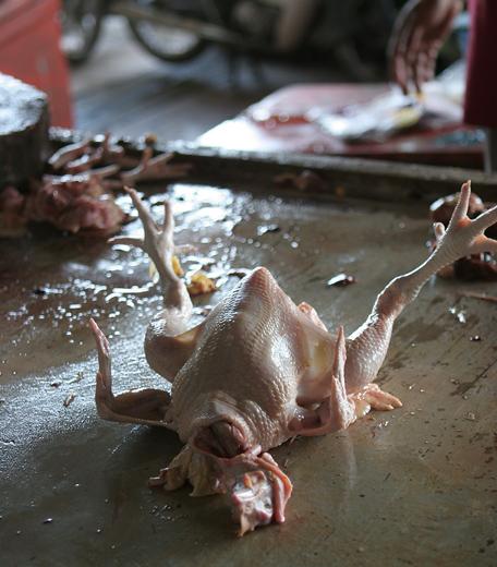 Asia fotografía de alimentos