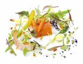 Dario Gualtieri Vegetales Bue Trainers fotografía de gastronomía