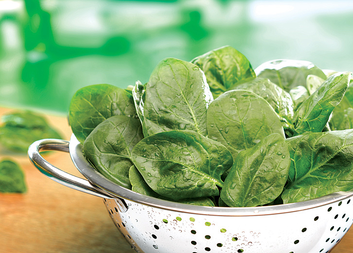 Granja del Sol Frozen Food Narda Lepes Spinach